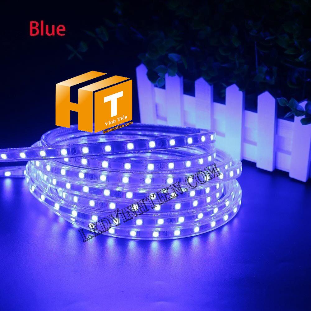ledvinhtien.com hình ảnh chụp mọi góc cạnh của đèn led dây 220V chíp led 5050 ánh sáng màu trắng loại tốt, giá rẻ, chất lượng, siêu sáng, dùng chiếu sáng ngoài trời, hắt trần, quấn cây, trang trí nội thất, ngoại thất, chiếu sáng công viên, xem thêm led dây màu xanh dương