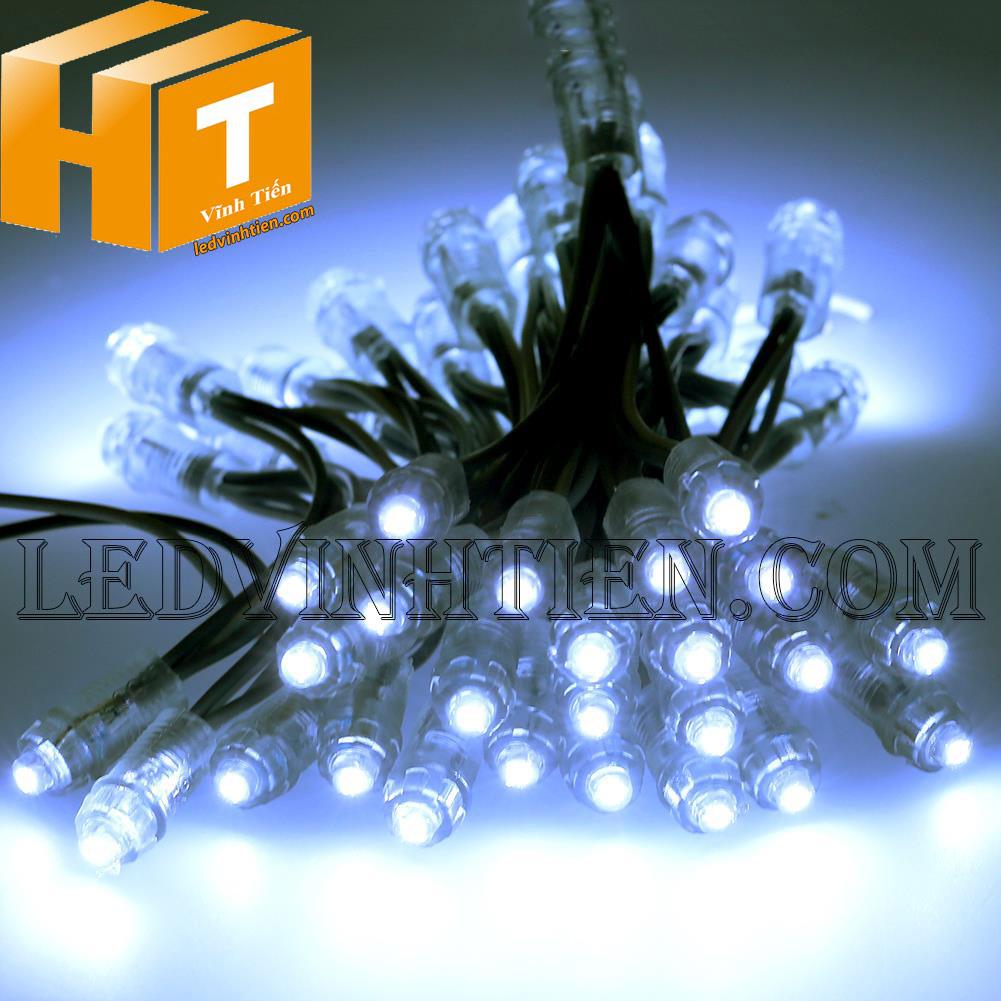 Led đúc f5 màu trắng loại tốt, giá rẻ, siêu sáng, chiếu sáng ngoài trời